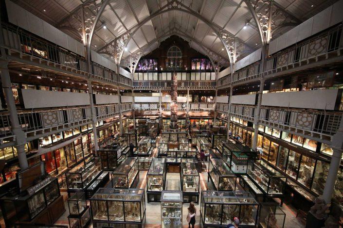 Pitt Rivers Museum